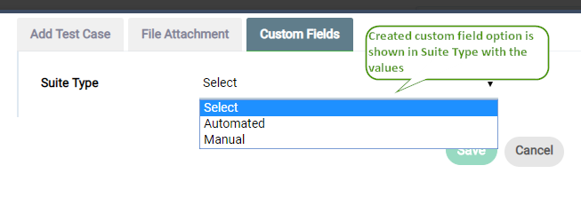 Created Custom field appearing in Suite type